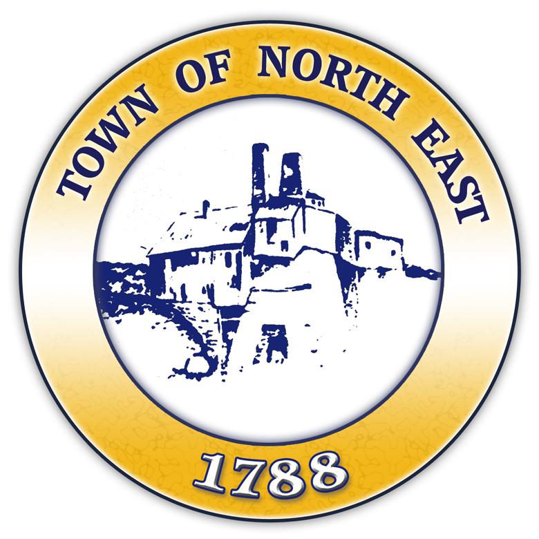 Town of Northeast New York Logo Re-Design